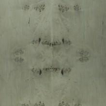 SILVER BRUSH MAPPA BURL